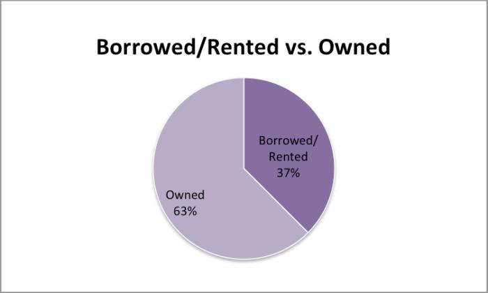 BorrowedRented vs Owned graph
